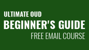 Ultimate Oud Beginner's Guide
